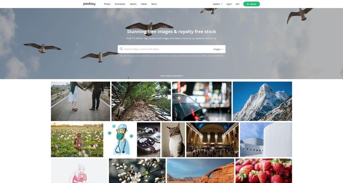 pixabay free stock images for blog